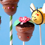 header_ninerbakes_flowerpot_bee_cakepops