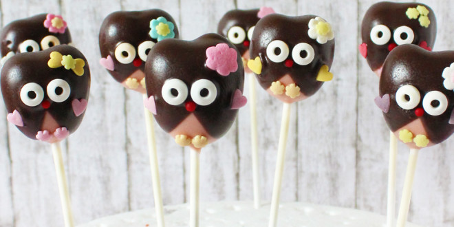 Kids Musical and Owl Cake Pops